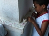 des-quintas-pitangas_rafael-01-9